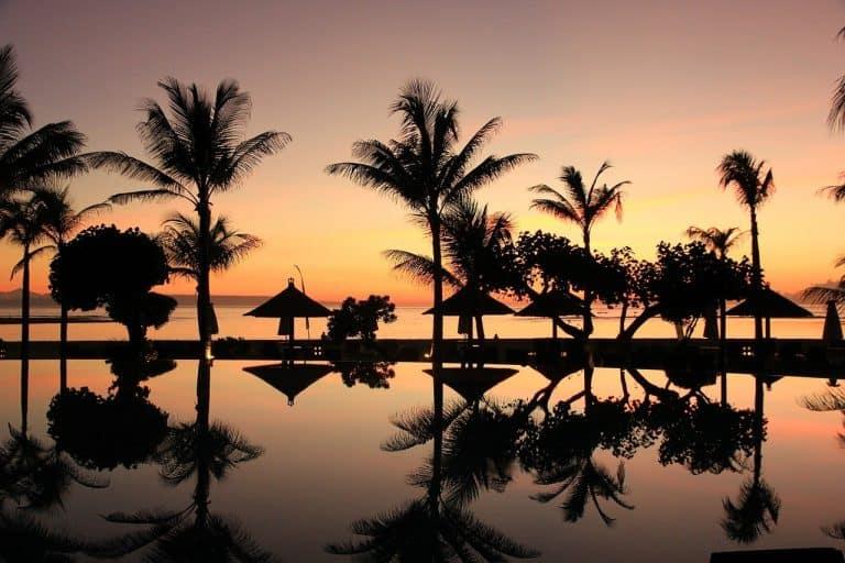 bali, palm trees, sunset